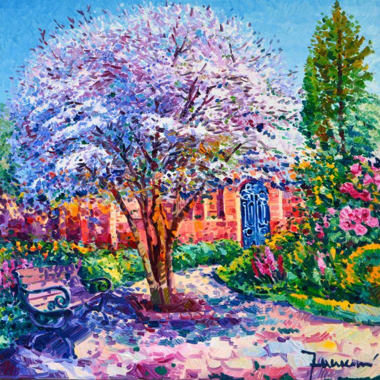 Il ciliegio racconta di luce e Sole Alto