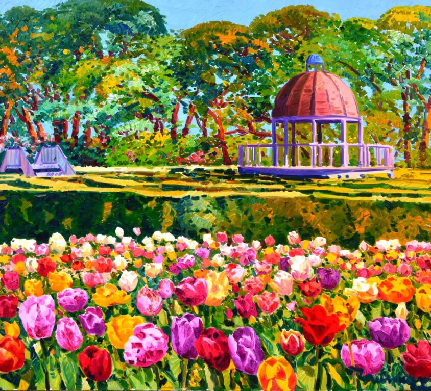 Luce sui tulipani e sullo sfondo il labirinto del parco Sigurtà