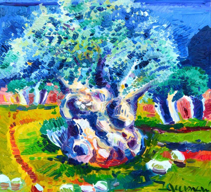 Luce sull'olivo secolare